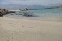 Spiagge di Stintino / Foto delle spiagge di Stintino, tra le più belle del mondo!!!