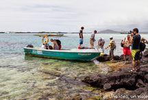 Ecuador and Galapagos / by Una idea, un viaje