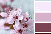 Color Palette #2792