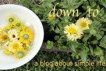 Fav Blogs
