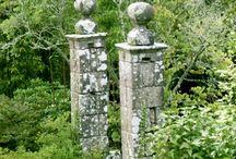 garden ideas / by Rose Fuller
