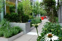 Lycée Francais Terrace / The 2011 graduating senior class of Lycée Francais de New York, offered an installation of a garden as a 'green' gift to their school. Located on the sixth floor terrace, the completed project features over 1000 Square Feet of planted-in-place native meadow, a scientific work lab, and a student lounge