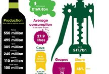 Wines Infographics / Information graphics or infographics are graphic visual representations of information, data or knowledge.
