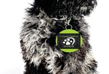 Dog and Horse products / Check out our #hempaw Products  www.highonhealth.ca