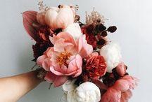 Kukkiakukkiakukkia