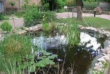 Jardin Interreligieux - Saverne