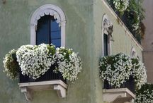 Balconies /Windows
