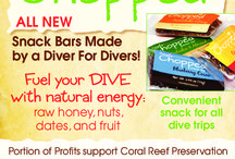 Ocean Living / Delicious Snack Bars. Certified Gluten Free. Dairy Free. Kosher. Raw Honey. No fillers. 2 Bars. Outdoor Enthusiasts. Eco Friendly. Lovers of Animals. www.nogluteninc.com