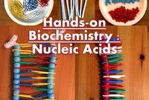 Nucleid acid