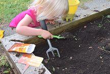 Good Fun - In The Garden