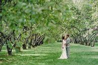 Свадебная фотография / Свадебная фотография от Алексея Гусева