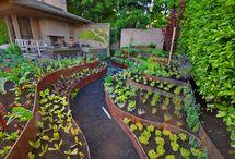 Cor-ten landscaping