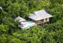 Amazing Ecotourism