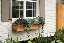 Planter boxes/shutters
