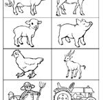 Natural Science/Art/Farm Animals