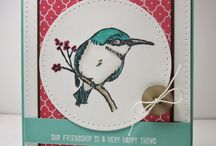 Bird Builder cards
