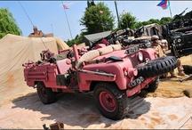 Pink Panthers / by Pegasus Parts