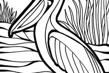 colouring in / pelican