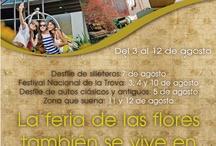 Publicaciones / Diez Hotel Categoria Colombia, estilo, cultura, arquitectura, diseño / by Diez Hotel