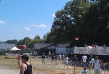 Firefly Music Festival 2013 / Another amazing festival with Tom Petty, Red Hot Chilli Peppers, Foster the People, Calvin Harris, Vampire Weekend and the most luxurious restroom trailers available anywhere, courtesy of Elite Coaches