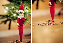 Meg Haney's 'Elf On The Shelf'  / by Meg Haney