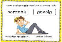 Nederlands tekstbegrip