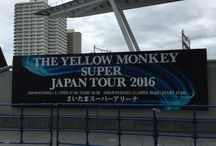 THE YELLO MONKEY