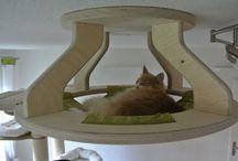 Le Catbusier