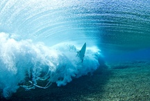 Surfs Up / by Gina Hastings-Price