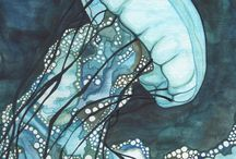 jellyfish / медузы, акварель, рисунок, море,  jellyfish , watercolor , drawing , sea