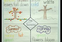 daily and seasonal changes
