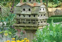 Birdhouses / by Robert Gravley