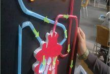 child biology