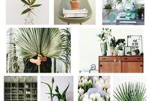 SchönerShop MoodBoard: Plants / www.schoenershop.net