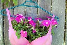 creative flower pots / Unusual flower pots