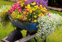 Jardinería & Arreglos florales / Materiales y elementos de la naturaleza se transforman en objetos de diseño que se incorporan en las tareas del día a día logrando ambientes puros y llenos de alma.