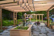 Backyard Home Designs