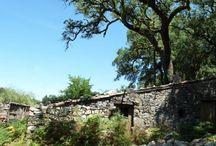 Portugal traditionell / Lernen Sie die traditionelle Lebensweise der Portugiesen in unserem Öko-Ferienhaus in einem Dorf in der Serra de Lousa kennen