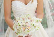 Bride / Photography