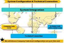 SAP ERP Financial Supply Chain Management