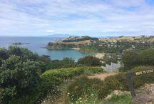 Destination NEW ZEALAND / DMC Orange Exchange offering services and bespoke programs in Auckland and Queenstown.