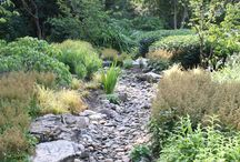 Dry Creeks, Riverbeds & Drainage / Drainage doesn't have to be an eye sore. These landscapes have included creeks and drainage into the overall design in a beautiful way, allowing homeowners to delight in the nature that water and native plants attract.