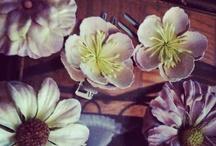 virágok / Papírvirágok