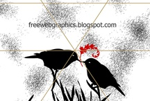love birds image