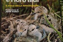 Libri Di Ornitologia