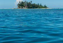 Pulau Tikus / Pulau Tikus