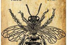 Bijen / bee