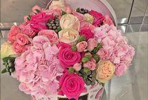 Flori în cutii