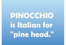 Pinenut facts