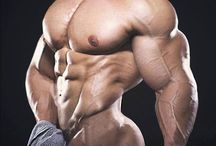 DIVINE MUSCLE